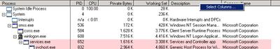 Process Explorer grafos pridėjimas 1